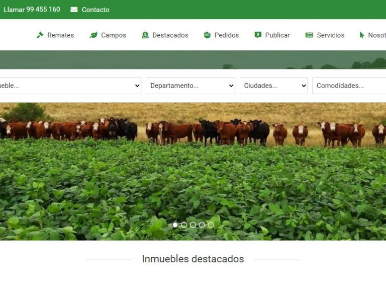 Uruguay, campos, venta, compra, inversiones, negocios rurales. - Gomensoro Leiva - Inversiones Rurales