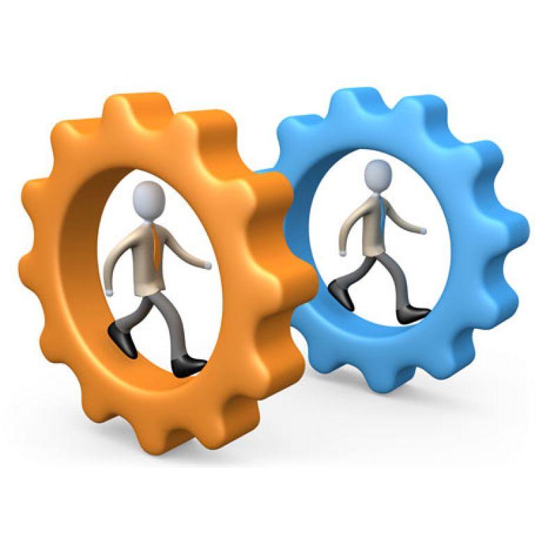 Competencias base y competencias diferenciadoras.